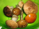 Главное фото рецепта Заморозка грибов