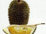 Дуриан - фрукт с ужасным запахом