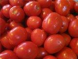 Главное фото рецепта Жареные помидоры на зиму