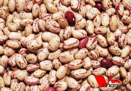 Один из популярных сортов сухой фасоли
