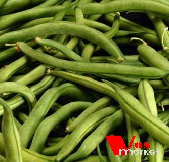 Свежо собранный зеленый стручковый фасоль