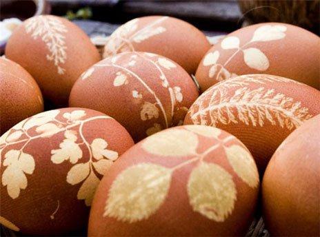Получаются цветки на поверхности яиц