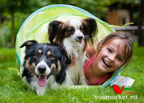 Дети любят играть с животными
