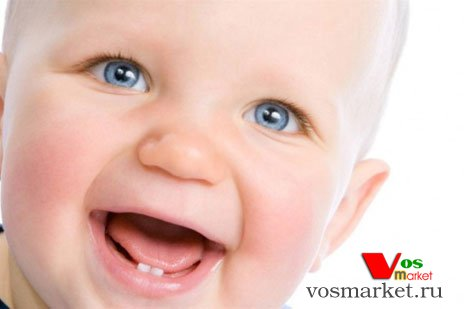 Появились первые молочные зубы