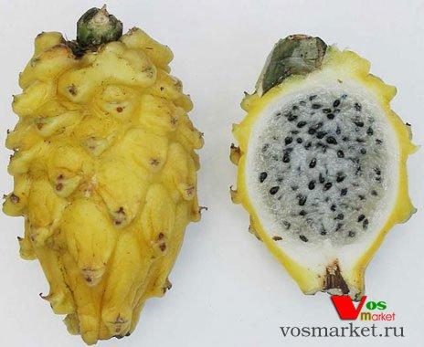Питахайя плод - половинки