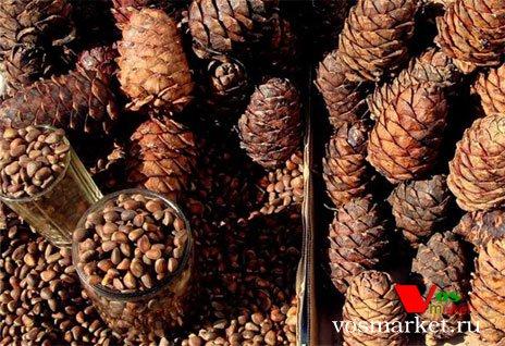 В таком виде кедровые орехи продаются в рынках