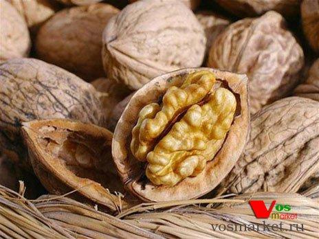 Созревшие плоды орехов в панцире