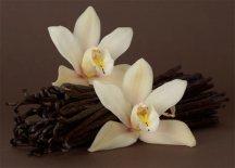 Цветок Орхидеи - ваниль
