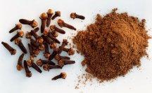 Приправа Гвоздика - семена и молота гвоздика