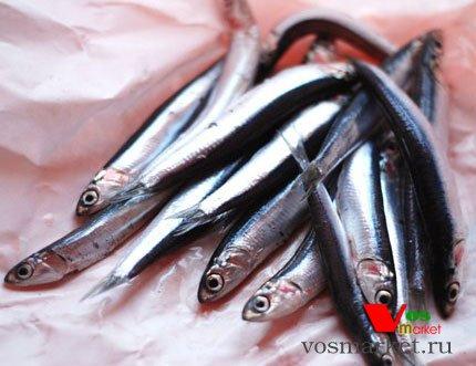 Рыба анчоус свежие