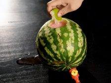 Фото к четвертому шагу приуготовлению рецепта Алкогольный арбуз